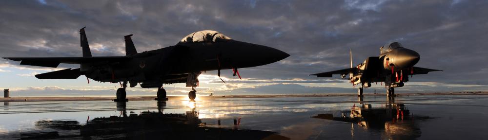 Tyto Athene USAF
